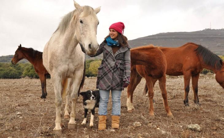 נקודת חן | חוות סוסים