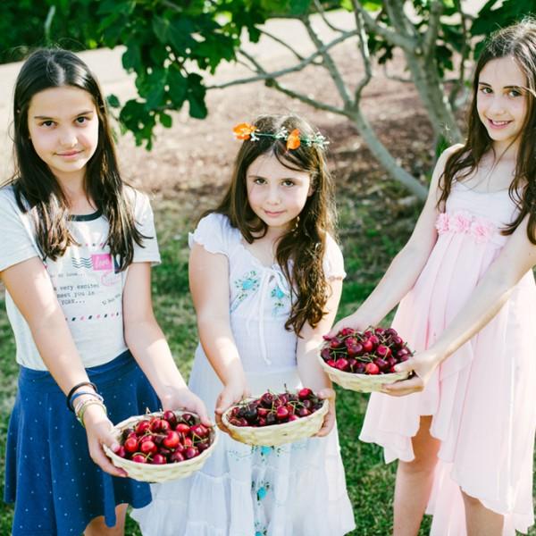 חגיגה של פירות יער: שבועות בבוסתן בראשית | אתר טיולי