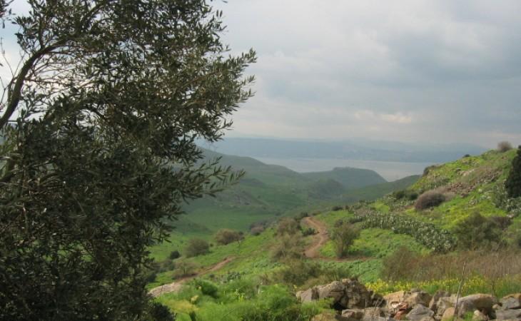 נקודות חן בגולן – טיול של טבע, היסטוריה ומשפחה